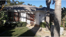 House To Rent in Springfield, Port Elizabeth