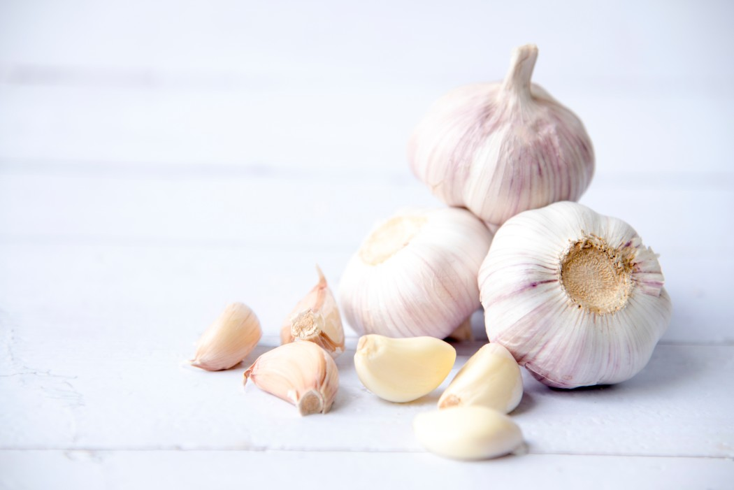 garlic immune boosters
