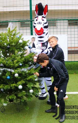 Zebrăduțul de Crăciun