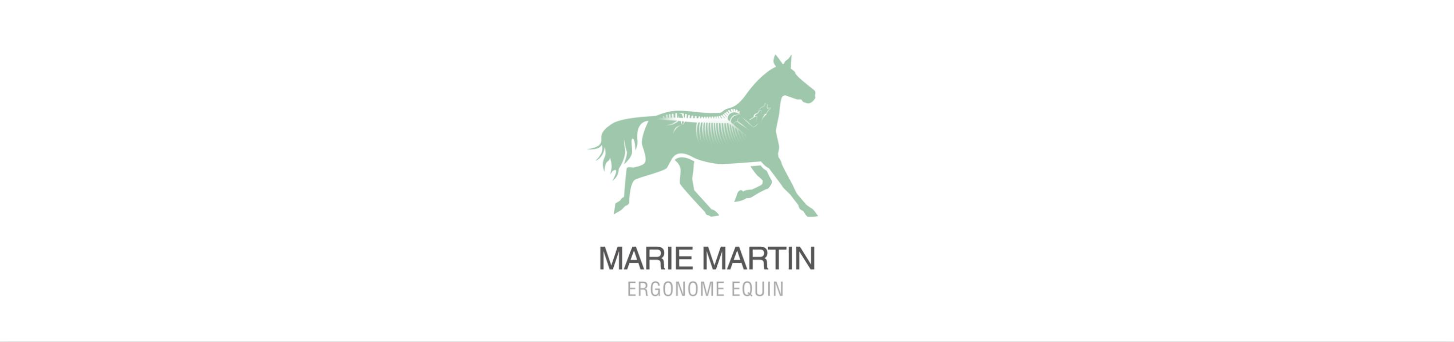 photo de couverture -Conseil Ergonomie Chevaux et Cavaliers