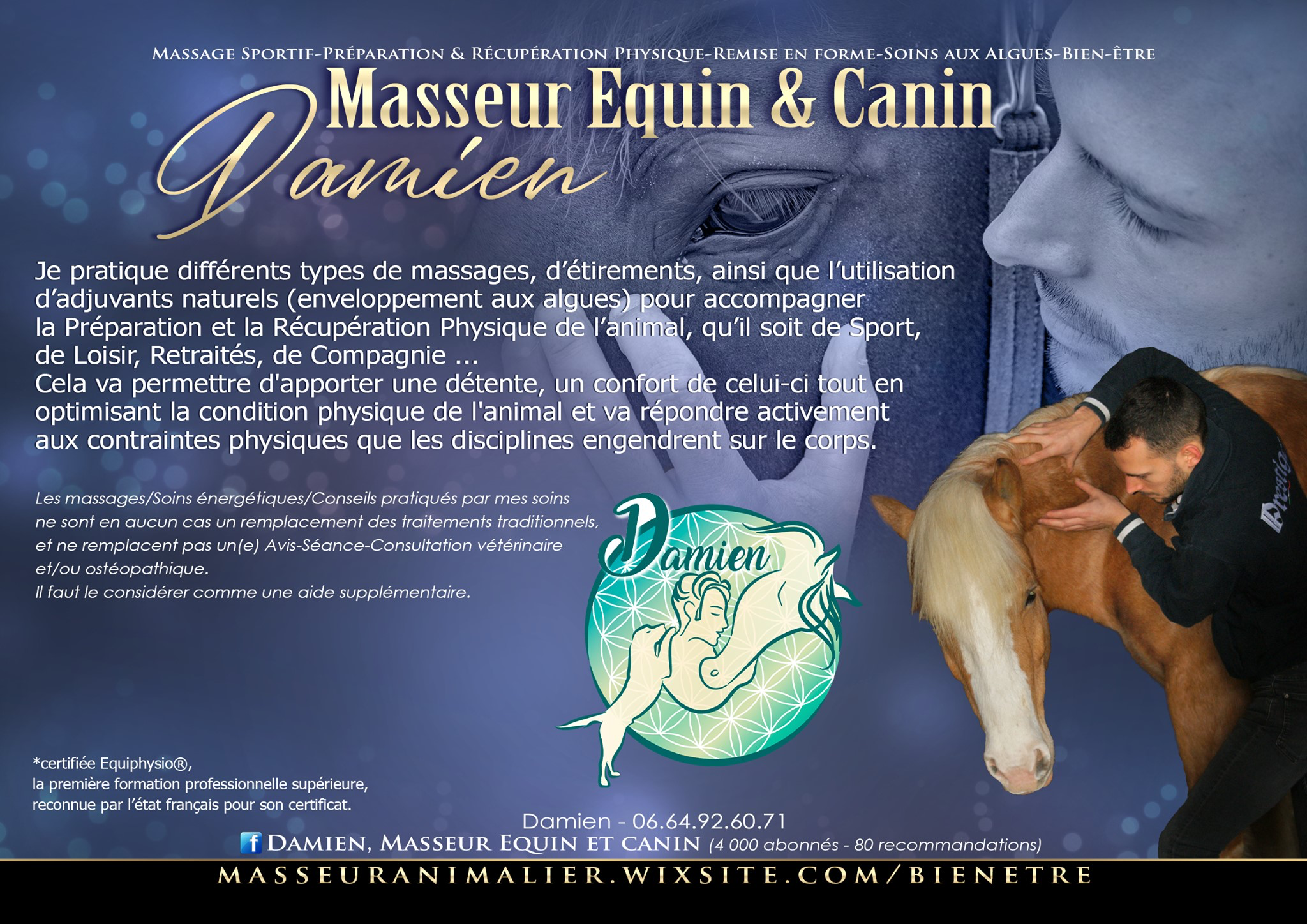 photo de couverture -Damien, Masseur Equin et Canin