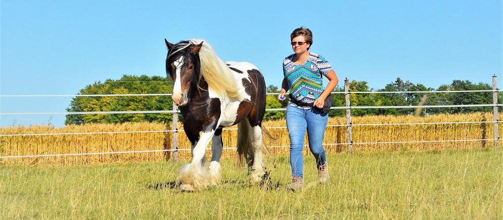photo de couverture -Emilie Fallet - Comportementaliste équin