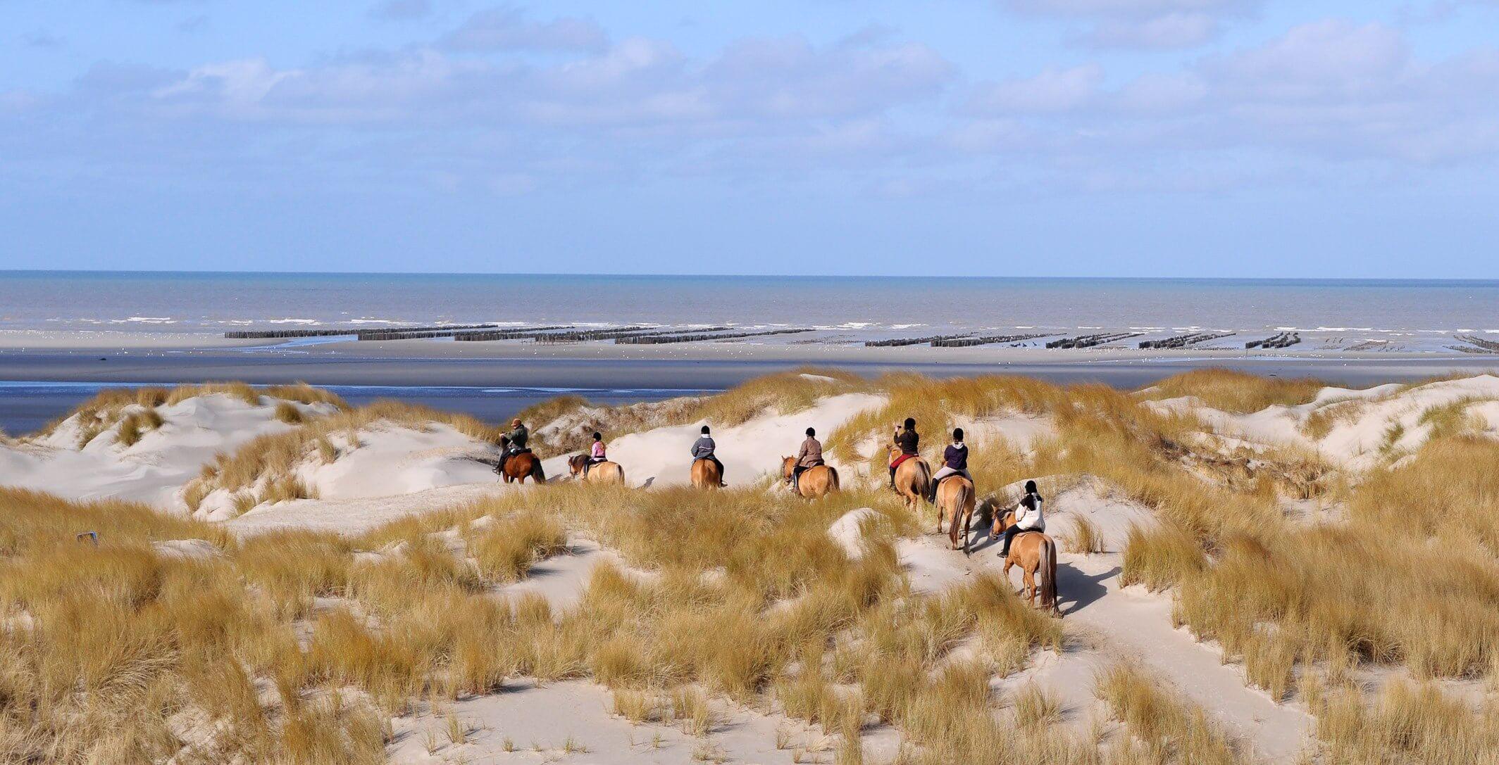 photo de couverture -Espaces Equestres Henson