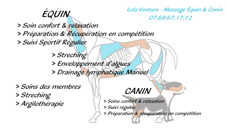 photo de couverture -LV Massage/Soin Thalasso Équin & Canin