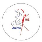 photo de profil animakine