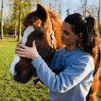 photo de profil chloe-beaurepaire-osteopathe-animalier-shiatsu-equin