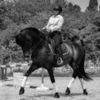 photo de profil chrystelle-bocquet-hdthorse-dressage-training