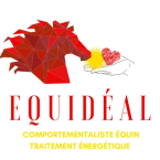 photo de profil equideal