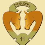 photo de profil espaces-equestres-henson