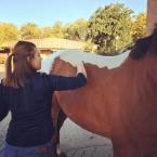 photo de profil justine-conreau-masseur-equin-et-canin