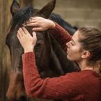 photo de profil lauryne-smeulders-masseuse-equin-et-canin