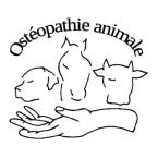 photo de profil melanie-villotta-osteopathe-animalier