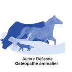 photo de profil osteopathe-animalier-aurore-defienne
