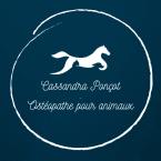 photo de profil cassandra-poncot-osteopathe-pour-animaux
