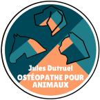 photo de profil jules-dutruel-osteopathe-pour-animaux
