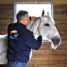 photo de profil gregory-h-masseur-equin