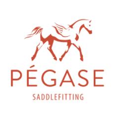 photo de profil pegase-saddlefitting