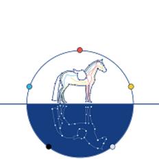 photo de profil equinoxe-saddle-fitting-shiatsu-equin
