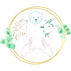 photo de profil faune-harmonie