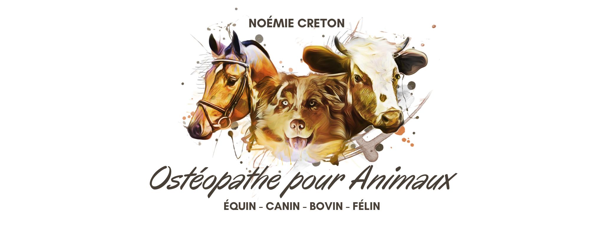 photo de couverture -Noemie Creton Ostéopathe pour animaux