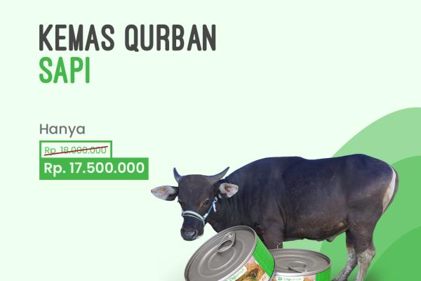 KS01: Kemas Qurban Sapi - Digiternak Indonesia