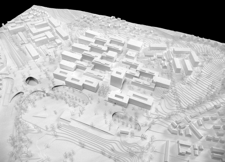 Giuliani Hönger Studie Irchel Campus Modell2