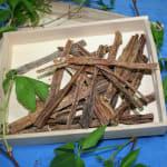 Euter-Sticks