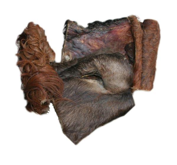 Rinderkopfhaut-mit-Fell-Platten