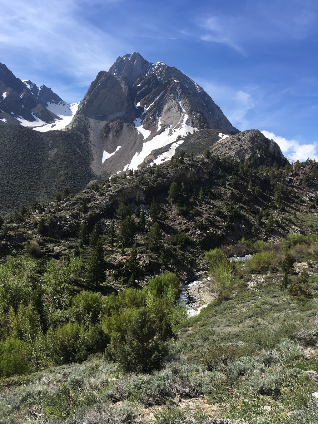 A view from the trail.