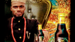 Guinness Nigeria unveils BBNaija star Prince Enwerem as Brand Ambassador