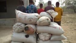 NDLEA intercepts 1,292 kilograms of illicit drug in Ondo