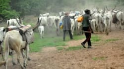 Herders/farmers clashes: Farmers' association appeals to Buhari