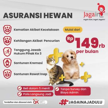 jagain, asuransi, asuransi hewan peliharaan, asuransi hewan peliharaan