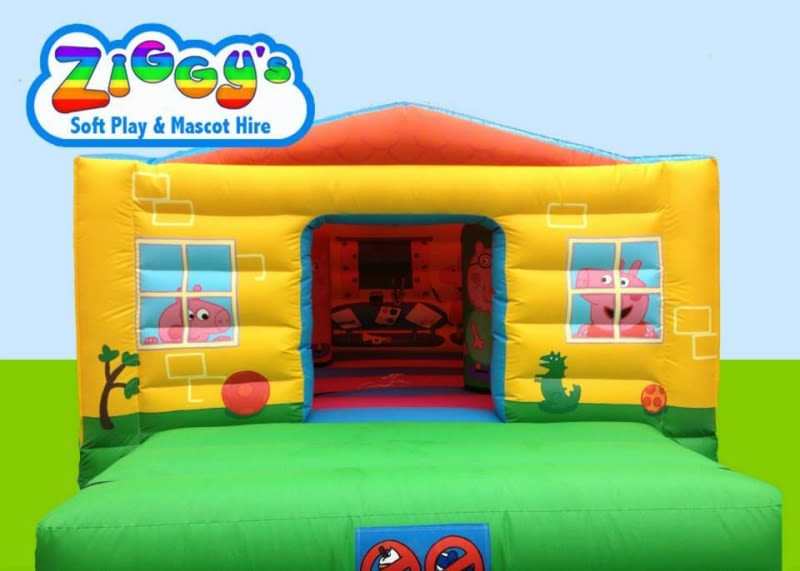 Popular Pig Bouncy House