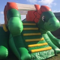 Green Dinosaur Slide