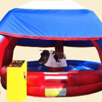 15ftx 15ft Rodeo Bull For (2 Hours)disney Megga Slide Red And Blue/40ft Army Assault Course/21ftx15ft Diseny Theme Castle Slide/10ftx9ft Ball Pool With Balls.
