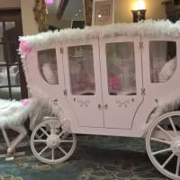 Show Stopping Princess Carriage