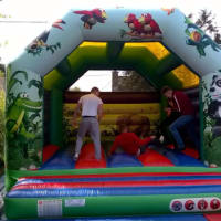 Adults Bouncy Castle (jungle Theme)