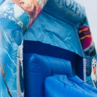 Frozen Bouncy Castle Combi