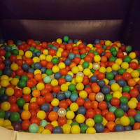 Adult Ball Pit 3