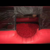Adult Ball Pit 1