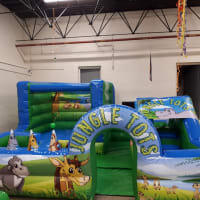 Jungle Play Park And Balloon Modelling Package