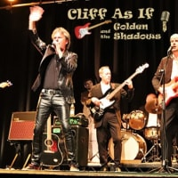 Cliff As If And The Golden Shadows