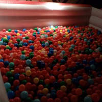 Adult Ball Pit 2
