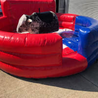 Rodeo Bull Hire 3 Hours Only