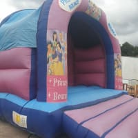 Medium Princess Castle With Cover