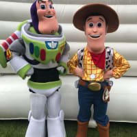 Toy Story 4 Party Package Offer