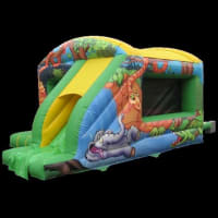 Jungle Themed Bounce And Slide