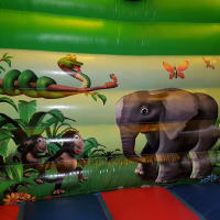 Jungle Bouncy Castle/slide