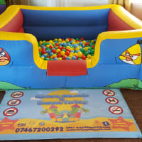 Ultimate Angry Birds Party Package
